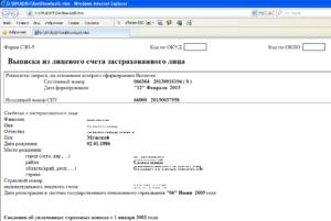 Пфр выписка из лицевого счета застрахованного лица