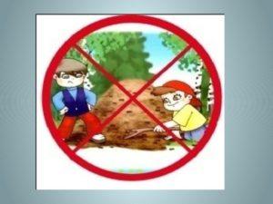 Правила поведения в лесу знаки в круге