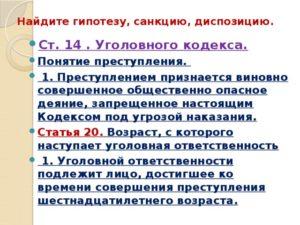 Гипотеза и санкция в уголовном кодексе