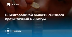 Прожиточный минимум на ребенка в белгородской области на 2020 год
