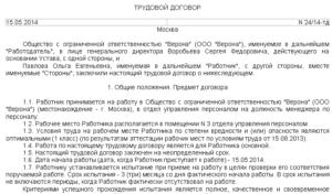 Трудовой договор с испытательным сроком 3 месяца образец для ип