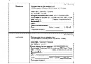 Фмс москва квитанция об оплате госпошлины загранпаспорт