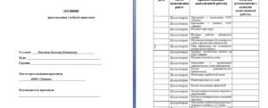 Отчет по производственной практике у судебных приставов