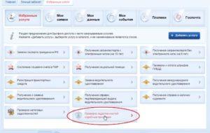 Как узнать ограничения на выезд за границу онлайн через госуслуги
