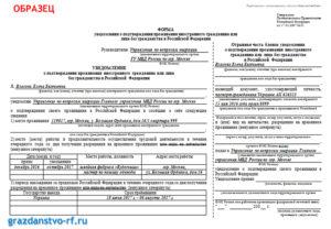 Отчет по рвп за год пакет документов