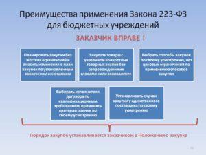 Закупки малого объема по 44 фз для бюджетных учреждений пример