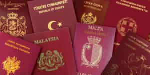 Институт двойного гражданства в рф