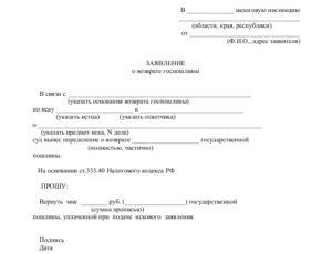 Заявление о возврате госпошлины оплаченной по предыдущему заявлению на госуслугах
