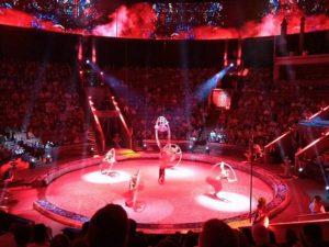 Есть ли скидки многодетной семье в краснодарский цирк