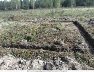 Передача земель сельхозназначения в аренду при долевом участии