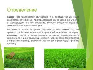 Определение газона в москве