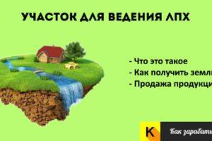 Как получить землю под лпх