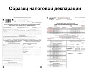 Где взять выписку налоговой декларации для банка